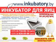 Инкубатор для выведения цыплят по ценам 2014 года!